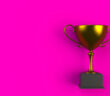 Trophy on pink plank, 3D rendering