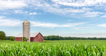 Classic red barn and silo set in a field of green corn and under a blue sky with copy space if needed.